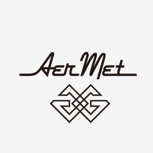 AerMetGロゴデザイン